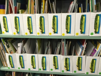 Banyan Leveled Books
